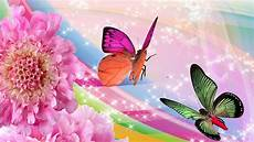 Mariposas Y Flores Wallpaper Butterfly Design Hd 2020 Live Wallpaper Hd