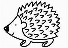 ausmalbilder igel 20 ausmalbilder tiere