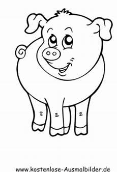 Schwein Malvorlagen Bilder Ausmalbilder Schwein 1 Tiere Zum Ausmalen Malvorlagen