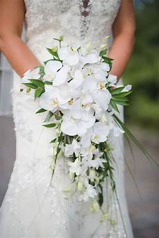 About Weeding Whimsical A Midsummer Night S Dream Tampa Wedding