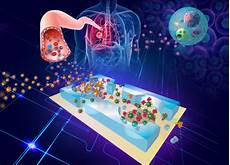 Lab On Chips New Lab On A Chip Could Revolutionize Early Diagnosis Of