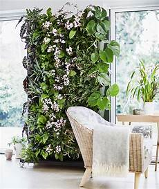 Plant Wall Lighting How To Make A Living Plant Wall Ideal Home