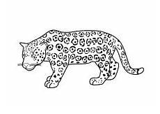 Kinder Malvorlagen Jaguar Malvorlagen Wildtiere Elefant L 246 We Tiger Reh