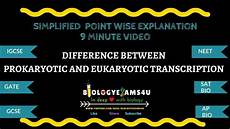 Difference Between Prokaryotic And Eukaryotic 8 Differences Between Prokaryotic And Eukaryotic