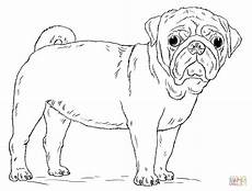 pug coloring page free printable coloring pages