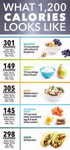 Perfect Health Diet Food Chart Provide Perfect Diet Chart Diet Plan Guidance By Saimaparacha