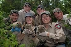 What Do Wildlife Biologists Do How To Become A Wildlife Biologist Matador Network