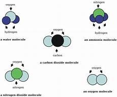 Molecule Vs Atom File Common Molecules And Atoms Svg Wikimedia Commons