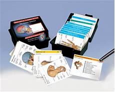 Human Anatomy Flash Cards The Skeletal System Anatomy