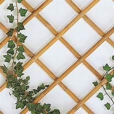 traliccio legno traliccio estensibile in legno marrone per esterno