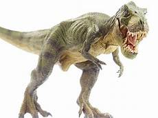 Malvorlagen Dinosaurier T Rex Top 60 Tyrannosaurus Rex Stock Photos Pictures And