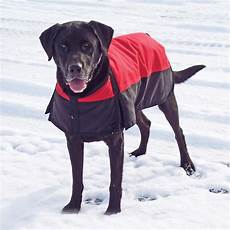dogs coats dura tech 174 insulated waterproof coat in coats