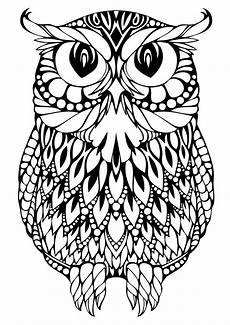 Free Owl Coloring Pages Hard Design Coloring Pages Getcoloringpages Com