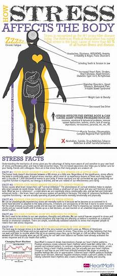 What Effect Does Human Activity Have On Many Ecosystems How Stress Affects The Body Infographic Huffpost