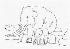 Malvorlagen Baby Elefant Free Printable Elephant Coloring Pages For