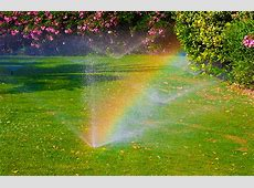 How Often Should I Water My Lawn in Northeast Ohio?