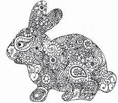 Malvorlage Hase Mandala Hase Zum Ausdrucken Einzigartig Bilder Hasen Brilliant