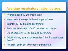 Normal Respiration Rate For Adults Chart Control Of Body Temperature презентация онлайн