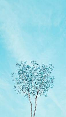 iphone blue aesthetic wallpaper pacific foliage minimalist wallpapers blue wallpapers