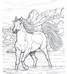 Pferde Ausmalbilder Gratis Ausdrucken Pferde Ausmalbilder 1 Ausmalbilder Gratis