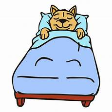 cat sleeping bed flat stroke transparent png svg