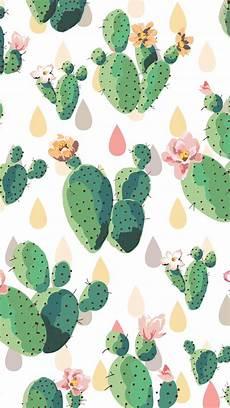 cactus iphone wallpaper cactus wallpapers wallpaper cave