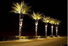 Tree Lights Stella Bradley Lighting