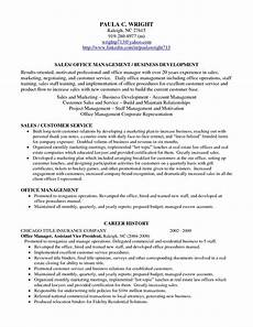 Personal Profile Resume Sample Professional Profile Resume Examples Resume Professional