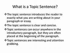 Examples Of Topic Sentences For An Essay Paper Rater How To Develop Topic Sentences