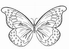 Ausmalbilder Schmetterling Kostenlos Ausdrucken Butterfly Pictures To Print David Simchi Levi