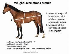 Healthy Horse Weight Chart Five Common Mistakes Made When Feeding A Horse Ecoequine