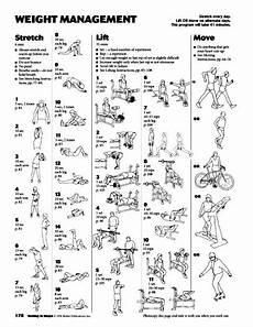Weight Lifting Exercise Chart How To Plan Weight Lifting Workouts Fitness Jungle Magazine