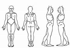 Blank Body Chart Blank Body Chart Free Download Aashe
