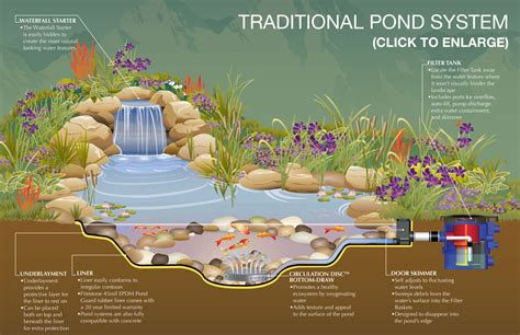 backyard pond design ideas above ground turtle ponds for backyards pond kits with