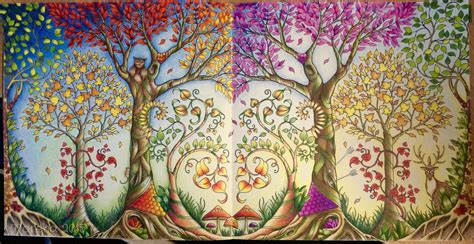 enchanted forest colored johanna basford enchanted forest coloured by morena
