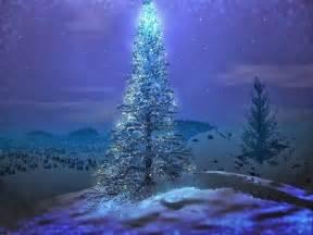 Beautiful Christmas Tree by Beautiful Christmas Tree Wallpapers Hd Tapandaola111