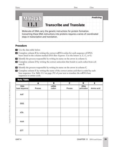 section 3 reinforcement dna worksheets chapter 11 dna and genes worksheet answers