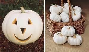 colored pumpkins the many colors of pumpkins sensational color