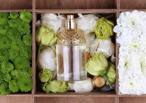 8 Summer Perfumes Youll by Vibhu Gairola