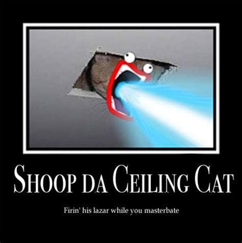 Shoop Da Whoop Meme - image 16674 shoop da whoop i m a firin mah lazer