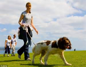 how far to walk a puppy owning a can make you healthier walking your pet and companionship from them can