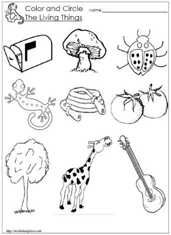 Living And Nonliving Things Worksheets Pdf by Circle The Living Things Worksheet Educational Resources