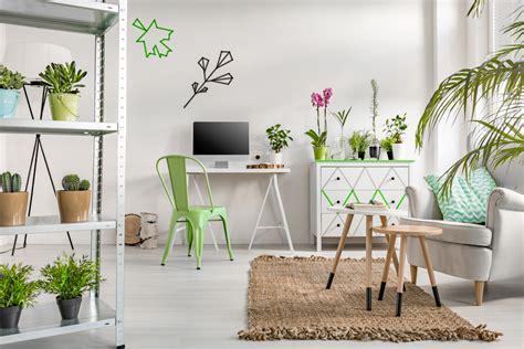 photos pianta da appartamento non pothos le piante facili da appartamento casa it
