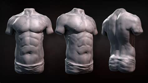 zbrush tutorial body sculpting human torsos in zbrush pluralsight