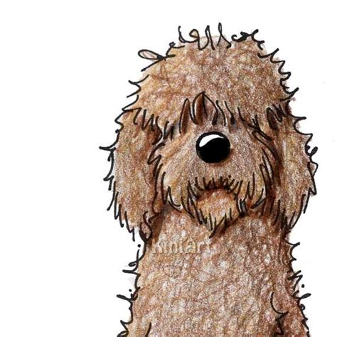 goldendoodle drawing labradoodle aceo original chocolate by kiniart on etsy