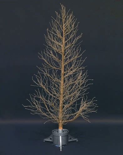 fibre optic christmas tree silver garden centre fibre optic and led twig trees