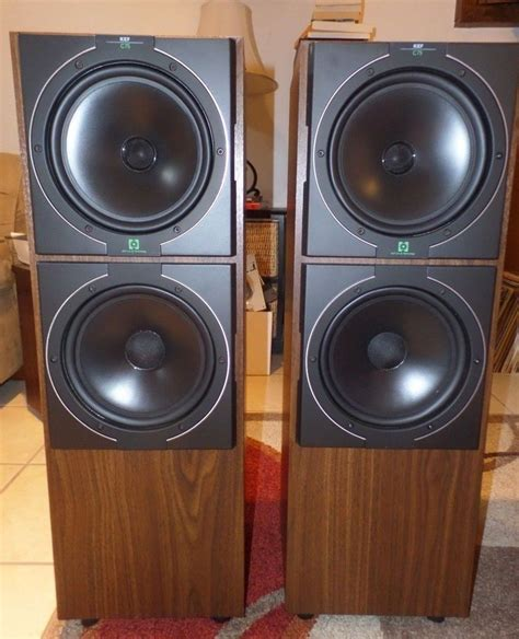 Ebay Floor Speakers by 17 Best Ideas About Floor Standing Speakers On Speakers High End Speakers And