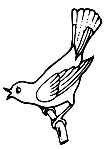 coloring pages of birds singing the 80 best images about coloring pages charts on