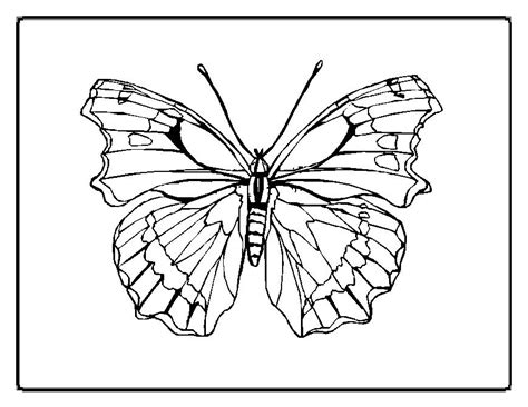 symmetry coloring sheets az coloring pages