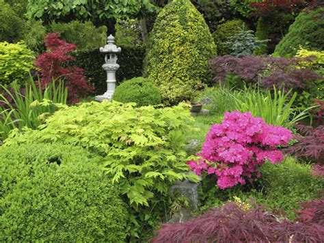 Eco Scape Groundskeeping   Pruning Trees and Shrubs